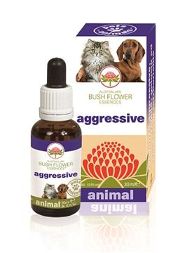 Immagine di AGGRESSIVE 30ML