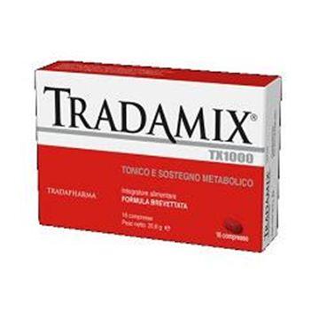 Immagine di TRADAMIX TX 1000 16CPR