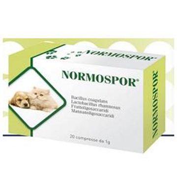 Immagine di NORMOSPOR 20CPR 1G