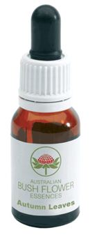 Immagine di AUTUMN LEAVES GOCCE 15ML