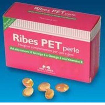 Immagine di RIBES PET 30PRL