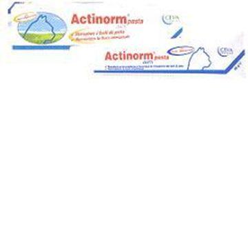 Immagine di ACTINORM PASTA GATTI 65G