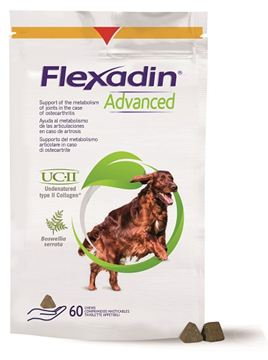 Immagine di FLEXADIN ADVANCED60TAVMASTIC